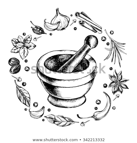 Stock photo: Star anise with cinnamon and mortar and pestle.