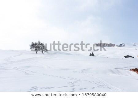 cabaña · nieve · campo · ilustración · casa - foto stock © bluering