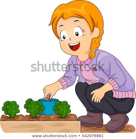 Kid Girl Garden Plants Hand Pick Snail Stock photo © lenm