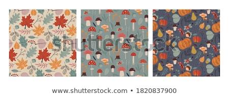 Сток-фото: набор · грибы · цветы · листьев · рисованной · вектора