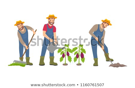 Farmer Man and Spades Icons Vector Illustration Stock photo © robuart