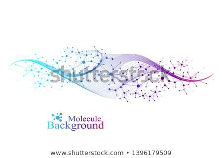 molekulák · DNS · szett · absztrakt · képek · fehér - stock fotó © pikepicture