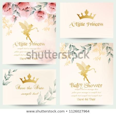 Happy Birthday Little Princess Card Set Vector Stock photo © robuart