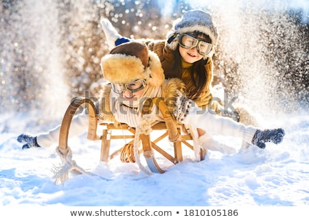Sledge in Snow, Winter Holidays. Stock photo © artfotodima