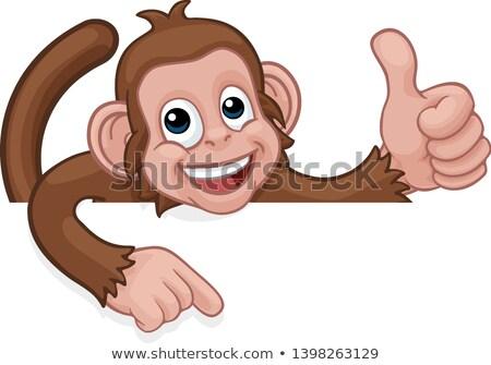 Stock photo: Monkey Cartoon Animal Pointing Thumbs Up Sign