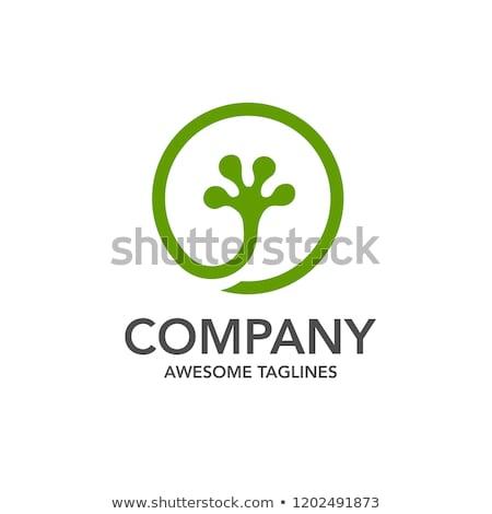 創造 ヤモリ サークル ロゴ ベクトル 緑 ストックフォト © krustovin