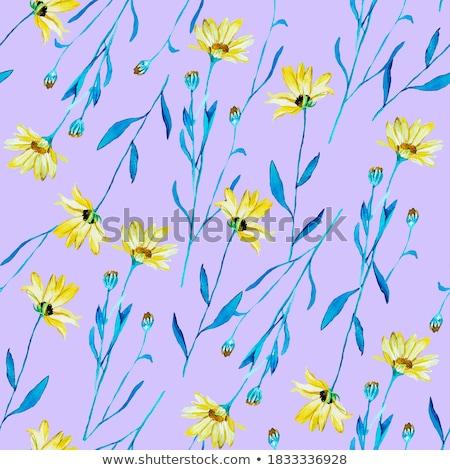 Azul aquarela rosas sem costura flores primavera Foto stock © shawlinmohd