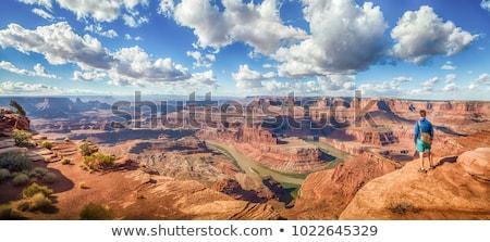 ストックフォト: グランドキャニオン · パノラマ · 南 · リム · 砂漠 · 公園