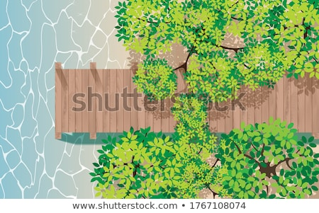 Stock photo: walkway in forest