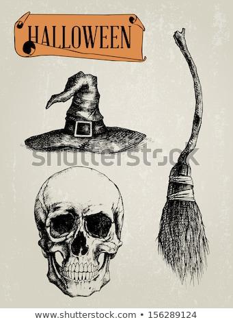 Halloween Skull in Witch Hat Stock photo © Krisdog