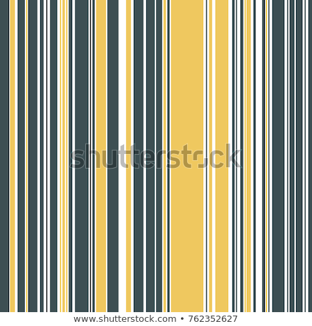 Abstract Geometric Pattern With Stripes Vector Seamless Background Black And White Lattice Texture Photo stock © Supertrooper