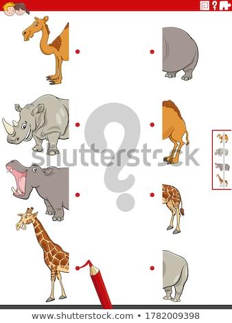 Gyufa képek vadállatok oktatási feladat rajz Stock fotó © izakowski