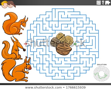 maze educational game with squirrels and walnuts Stock photo © izakowski