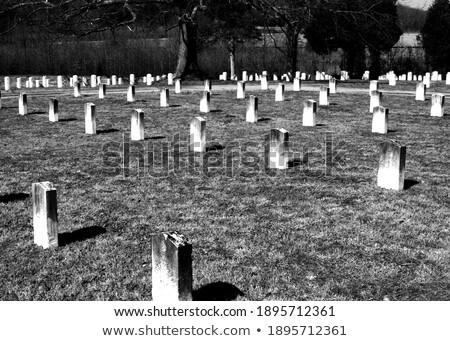 Confederate cemetery in Fredericksburg VA Stock photo © backyardproductions