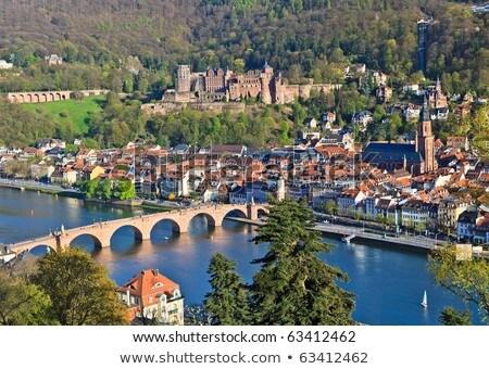 beatiful panoramic view to the Rhine valley Stock photo © meinzahn