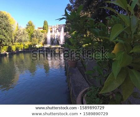 Célèbre italien villa région Italie fleurs Photo stock © Zhukow