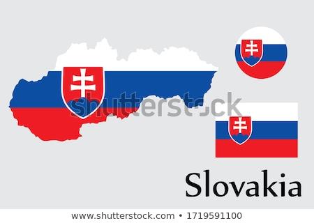 Szlovákia vidék sziluett zászló izolált fehér Stock fotó © evgeny89