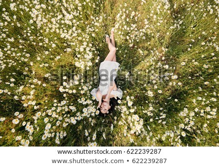 Portrait of a pretty girl lying on the grass  stock photo © OleksandrO