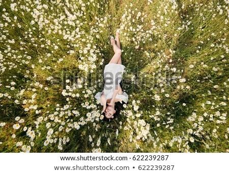 retrato · bastante · menina · grama · verão · sorrir - foto stock © OleksandrO