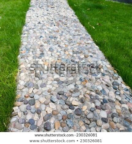 çakıl taş görüntü açık bahçe Stok fotoğraf © pongam