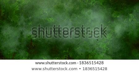 abstrato · artístico · dia · trevo · primavera · arte - foto stock © pathakdesigner