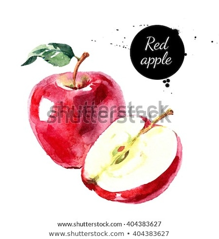 green apple on white background watercolor illustration stock photo © conceptcafe