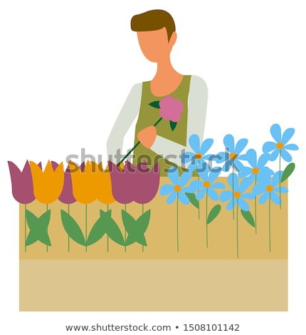 Farmer Florist Picking Flowers Flowerpot Isolated Stock photo © robuart