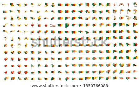 very big collection of vector flags of the Cameroon Stock photo © butenkow