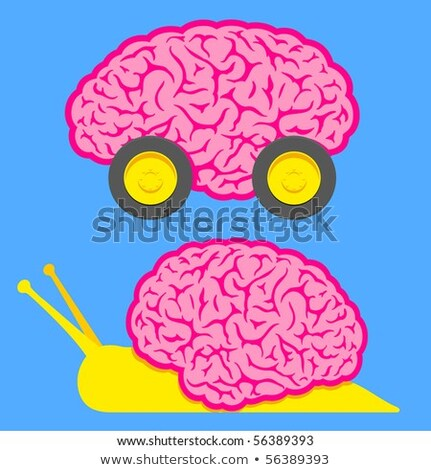 Fast brain on wheels and slow snail brain   Stock photo © adrian_n