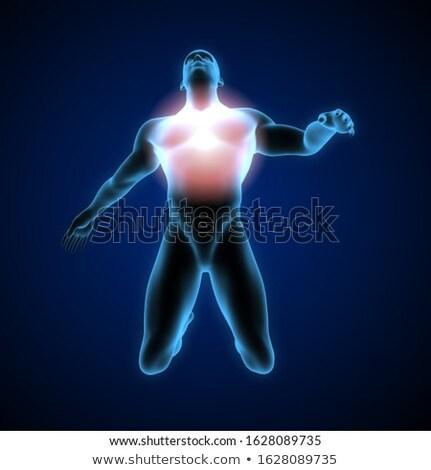 Dor no ombro transparente humanismo descobrir azul músculo Foto stock © wavebreak_media
