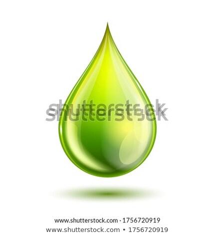 Verde drop isolato bianco salvare terra Foto d'archivio © pakete