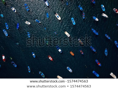 Top view at sea bay with pier and many boats and yachts Stock photo © bezikus