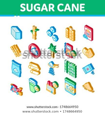 Cukornád mezőgazdaság izometrikus ikon szett vektor kockacukor Stock fotó © pikepicture