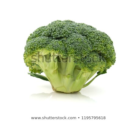 Fresh head of calabrese broccoli standing upright Stock photo © sarahdoow