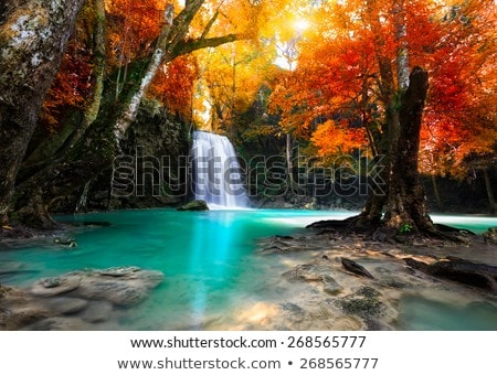 Tropical beautiful landscape. stock photo © NeonShot