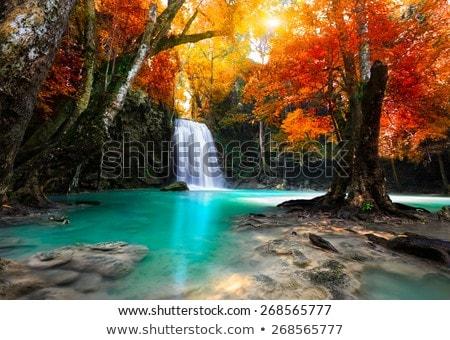 Stock photo: Tropical beautiful landscape.