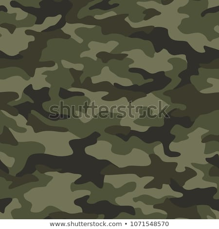 Camouflage spots and leaves green seamless vector pattern. Stock photo © yopixart