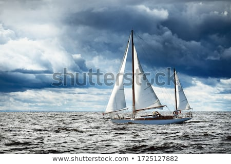 Boat winch Stock photo © trgowanlock