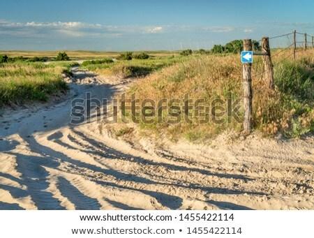 Dismal River road sign Stock photo © PixelsAway