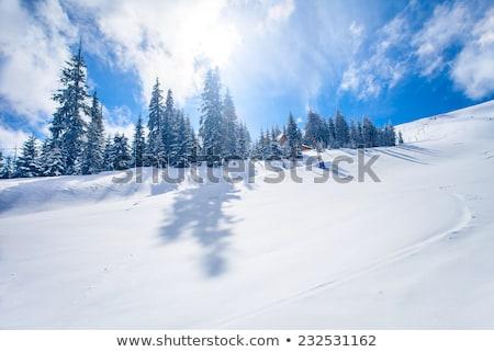 Stok fotoğraf: Tracks On Ski Slopes At Beautiful Sunny Winter Day