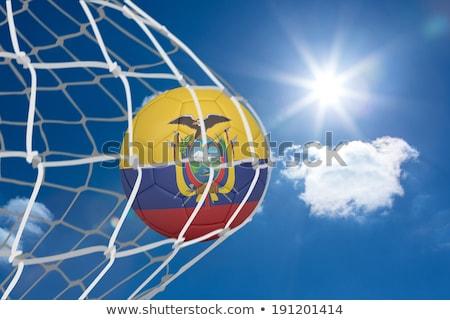 サッカーボール 目標 純 デジタル 生成された エクアドル ストックフォト © wavebreak_media