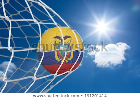 Soccer ball in goal net against digitally generated ecuador national flag Stock photo © wavebreak_media