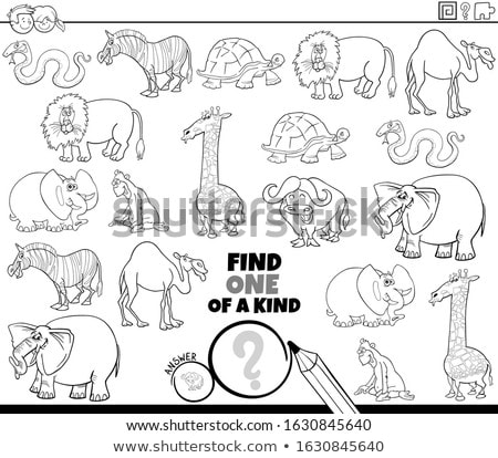 one of a kind game with wild animals color book page Stock photo © izakowski