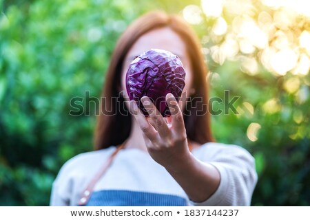 Woman showing cabbage Stock photo © photography33