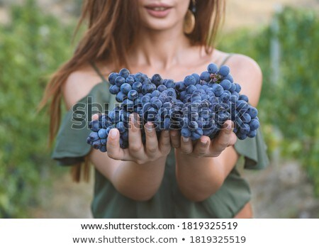 woman with grape stock photo © kurhan