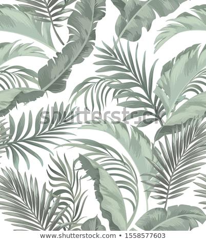 Vector vintage seamless leaves Stock photo © fresh_5265954