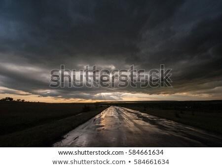 Bumpy road in the field Stock photo © colematt