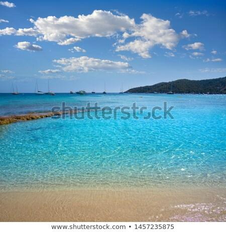 Ibiza Playa Ses Salines beach in Balearic Islands Stock photo © lunamarina