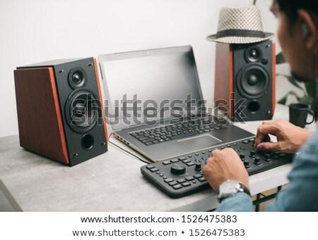 Estéreo ordenador oradores blanco azul sonido Foto stock © magraphics