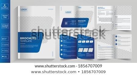Mértani kék éves jelentés üzlet brosúra Stock fotó © SArts